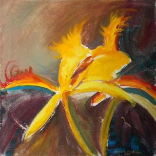 Желтые орхидеи в темноте