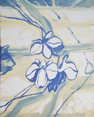 Светлые орхидеи