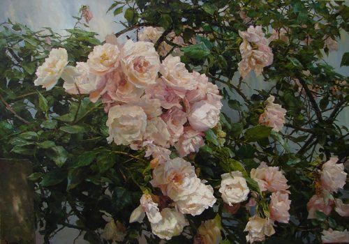 В тенистом саду. Розы