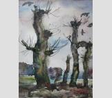 Деревья и птицы