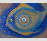 "Вселенная ""Рыбка-глаз"""