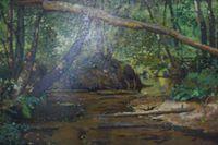 Ручеек в лесу