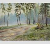 Дорога в сосновый бор