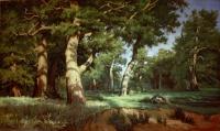 Копия картины И.И.Шишкина.