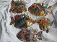 Рыбки разные